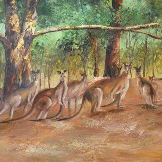 Bushland Companions Grant Young